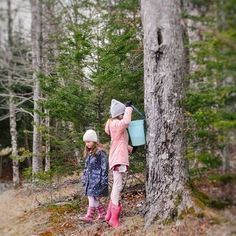 Sue | Home + School Lifestyle (@reaching_happy) • Instagram photos and videos New Brunswick, Homeschool, Photo And Video, Lifestyle, Couple Photos, Videos, Happy, Travel, Instagram