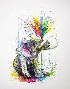 Elephant-Philipp-Grein-Animal-Paintings-in-Splashes-of-Color