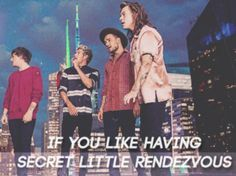 I got: If you like having secret little rendezvous! Which Lyric Are You From One Direction's 'Perfect'?