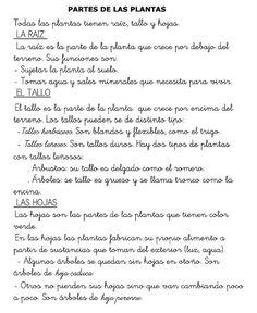 Menta Más Chocolate - RECURSOS PARA EDUCACIÓN INFANTIL: Plantas: Lecto-escritura