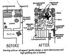 permaculture transformation