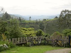 Ride to an artisanal coffee farm, marvel at the cloud forest landscapes, enjoy a waterfall and peruse artisan creations on this day tour around Salento.