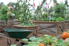 Great raised beds - container gardening. Jon Carloftis Fine Gardens