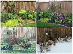Seasonal gardens and a list of perennial plants