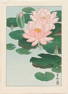 Ohara Koson, Water Lilies, Japanese, Shôwa era, 1920s.