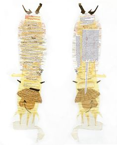 Woo Yun Jin  ~ One of the nine stories, Specimen, 'translated' to a paper collage. Paper, fabric, plastic bag, glue, 30'x8'' (good article attached)