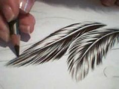 How To Draw Feathers Tutorial http://www.youtube.com/watch?v=daa2G-FkbGI=related