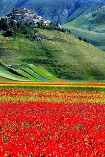 Castelluccio , Italy Perugia Umbria