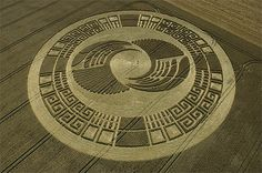 I like the intricate beauty of big crop circles, and how there is a shroud of mystery and intrigue around them. Huge beautiful shapes that appear overnight. Crop Circles, Aliens And Ufos, Ancient Aliens, Circle Art, Circle Design, Latest Ufo Sightings, Nazca Lines, Alien Art, Land Art