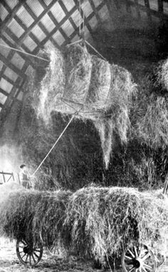 Bales Of Hay Going Into Barn Hay Mow..Tripping The Rope Was Always My Job