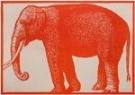 Ah, elephant place mats! $20.00