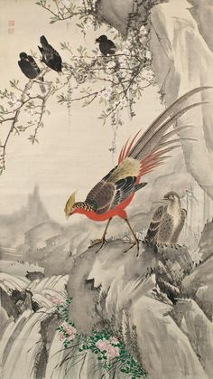 Ink and color on paper. About Japan by artist Chô Gesshô Japanese Artwork, Japanese Painting, Japanese Prints, Golden Pheasant, Tinta China, Bird Illustration, Illustrations, Korean Art, Bird Pictures