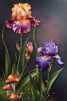 """Barnali Bagchi ~ """"Iris Dreams"""" ~ moonbeam1212."""