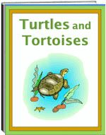 Science Thematic Units Welcome to the SchoolExpress Educational Online Store Daily Routine Chart For Kids, Charts For Kids, Award Certificates, Certificate Templates, Special Education Teacher, Kids Education, 1st Grade Worksheets, Free Worksheets, Kinds Of Turtles