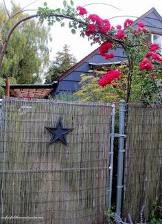 Beautify a Chain-Link Fence with {Bamboo!}