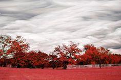 Red Acre - Timestack - TGBurnett Photography