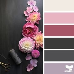SnapWidget | today's inspiration image for { flora tones } is by the talented @c_colli ... thank you, Cristina, for another *incredible* #SeedsColor photo share!