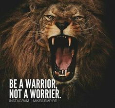 342 Motivational Inspirational Quotes About Success 1 Inspirational Quotes About Success, Motivational Quotes For Life, Success Quotes, Leadership Quotes, Warrior Quotes, Prayer Warrior, Lion Quotes, Wolf Quotes, Winning Quotes