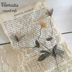 *:.*.:*:。おはよ♡。:*:.*.:*:。 * 雨で始まる一日ですね…* * クレマチスのドライが仕上がりました ❀.(*´◡`*)❀. * 綺麗にできてうっとりです꒰ღ˘◡˘ற꒱✯*・☪:.。 * 今日は お友達と素敵な世界を覗いてきます✿ * 皆さんも 平日ラスト 楽しんでね♡ * * * #home  #happy  #Clematis #dryflower  #natural  #naturalinterior  #whiteinterior  #naturalfrench #antiquelace  #おうち  #ドライフラワー #クレマチス #アンティークレース #ナチュラル #ナチュラルインテリア #ホワイトインテリア #ナチュラルフレンチ