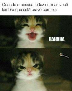 #piadas divertidas