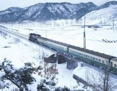 Snowflower train trip. South Korea, Mt Tae-baek 태백 눈꽃열차 : 네이버 이미지검색