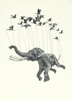 Thus we have a clearly tortured elephant being lifted by a flock of amazingly strong birds.