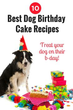 The 10 best dog birthday cake recipes out there! Spoil your pup with these homemade dog cake recipes. It's the perfect treat!