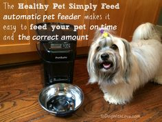 Enter the  PetSafe Giveaway on To Dog With Love to win a Healthy Pet Simply Feed automatic, portion-controlled pet feeder. Ends 6/22/15.