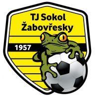 Soccer, Football, Badges, Club, The World, Football Team, Coat Of Arms, Madness, Hs Football
