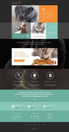 A Cat's Own Website #Drupal #template. #themes #business #responsive