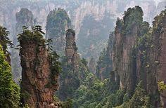 zhangjiajie national forest park china - the mountains of Avatar Zhangjiajie, Places To Travel, Places To See, Travel Destinations, Places Around The World, Around The Worlds, Earth Day 2013, Avatar, Park Around