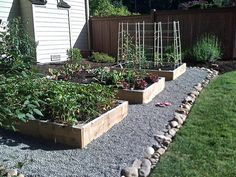 Raised Garden Beds, with gravel and riverstone edging.