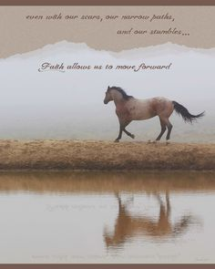 Mystical Beauty For Western Art Greeting Card Rodeo Quotes, Equestrian Quotes, Cowboy Quotes, Inspirational Horse Quotes, Inspirational Canvas Art, Cute Horses, Horse Love, Horse Riding Quotes, Horse Therapy