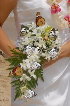 BUTTERFLY WEDDINGS What do you n