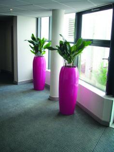 Yang Hot Pink Planters http://www.livingreendesign.com/category/30-ying-yang.aspx