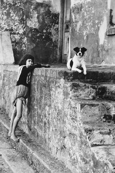 The Spirit of District Six: 32 Interesting Black and White Photographs Capture Everyday Life of Cape Town, South Africa in 1970 ~ vintage everyday Old Photos, Vintage Photos, Black And White Dog, Cape Town South Africa, Vintage Dog, Most Beautiful Cities, Historical Pictures, African History, Animal Photography