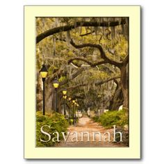Forsyth Park - Savannah, GA Post Card just SOLD in my Zazzle store online.