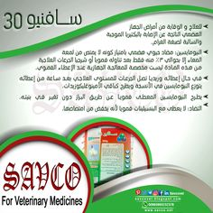 #SAVNEO_30 #Powder  Each 1000 g contains: #Neomycin Sulphate as base 300g Excipients SQ 1000g  #Indications: Neomycin is used in cases of digestive bacterial infections caused by gram-negative bacteria. Neomycin is considered one of the strongest digestive antibiotics since it remains in the tract unabsorbed, so it has a high effect against sensitive bacteria. SAVENO 30 is used in all kinds of birds including poultry, layers, breeders, and calves.
