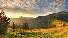 Góry, Zachód, Słońca, Droga, Drzewa