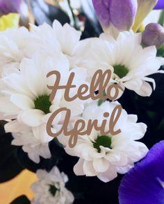 Hello April :)