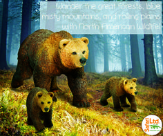 Our new 2015 Wild Safari® North American Wildlife Grizzly Bear and Cub