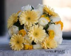 daisy and ranunculus - Google Search