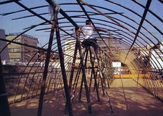 Bamboo Greenhouse