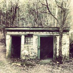 An old hut on the pipeline track, Fern Tree (Tasmania). Photo by jocelyngreen17