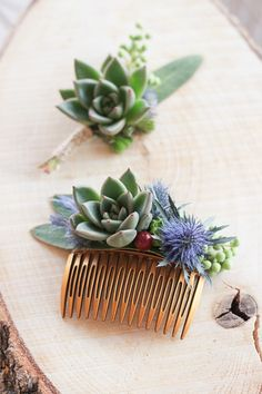 Hair accessories & boutonniere for bride and groom who are succulent lover