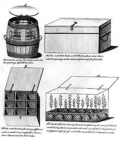Dr. Nathanial Ward's accidental invention of the Wardian Case in 1829. He traveled with Captain James Cook and needed to protect his botanical samples from the cold wind and the salt spray.