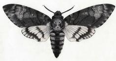 Nature Tattoo Sleeve Animals Wings Ideas For 2019 Nature Tattoo Sleeve, Nature Tattoos, Sleeve Tattoos, Moth Tattoo Design, Triangle Tattoo Design, Tattoo Papillon, Skull Moth, Black And Grey Sleeve, Bug Tattoo