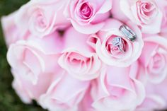 ring picture, pink roses