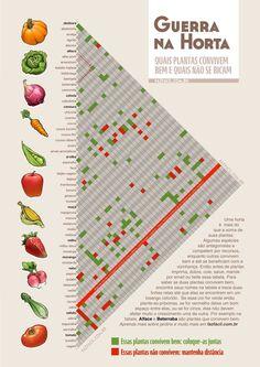 Plantas-companheiras.jpg (1200×1698)