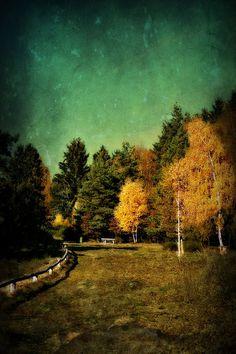 'Herbstlandschaft ' von Elke Balzen bei artflakes.com als Poster oder Kunstdruck $18.03